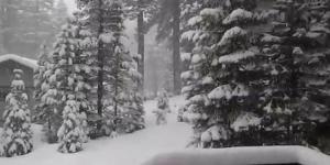 استعدوا للعاصفة الثلجية الأولى لهذا الشتاء!