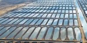 مصر تفتتح أكبر مشروع لاستزراع السمك في الشرق الأوسط