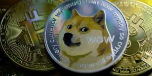 EasyDNS تبدأ بقبول Dogecoin كوسيلة للدفع