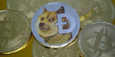 عملة Dogecoin ارتفعت بأكثر من 400% في أسبوع