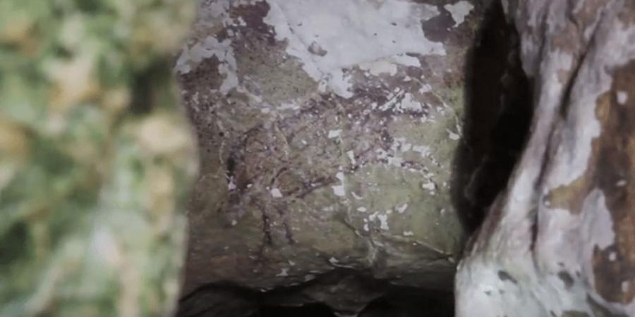العثور على أقدم لوحة كهف بالعالم في إندونيسيا