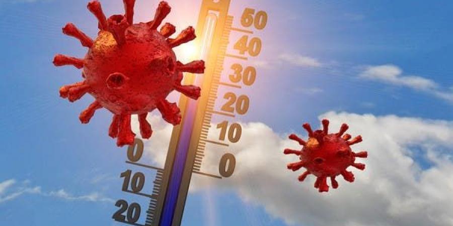 كورونا ودرجة الحرارة.. هل يكبح الصيف انتشار الفيروس؟